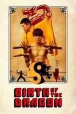 Nonton Film Birth of the Dragon (2017) Subtitle Indonesia Streaming Movie Download