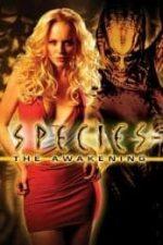 Nonton Film Species: The Awakening (2007) Subtitle Indonesia Streaming Movie Download