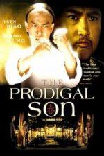 Nonton Film The Prodigal Son (Bai ga jai) (1981) Subtitle Indonesia Streaming Movie Download