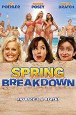 Nonton Film Spring Breakdown (2009) Subtitle Indonesia Streaming Movie Download