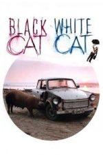 Nonton Film Black Cat, White Cat (1998) Subtitle Indonesia Streaming Movie Download