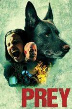 Nonton Film Prey (2020) Subtitle Indonesia Streaming Movie Download