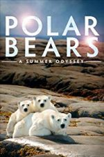 Nonton Film Polar Bears: A Summer Odyssey (2012) Subtitle Indonesia Streaming Movie Download