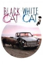 Nonton Film Black Cat, White Cat (1998) Subtitle Indonesia Streaming Movie Download