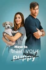 Nonton Film How to Train Your Husband or (How to Pick Your Second Husband First) (2018) Subtitle Indonesia Streaming Movie Download