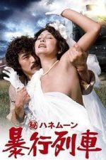 Nonton Film Secret Honeymoon: Assault Train (1977) Subtitle Indonesia Streaming Movie Download