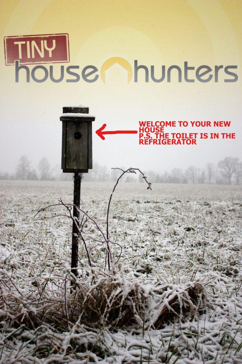 Large Of Tiny House Hunters Full Episodes