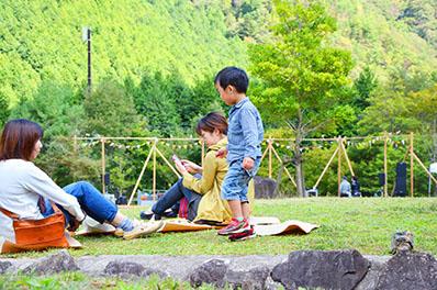 picnic seat1