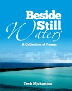 beside still waters amend cover
