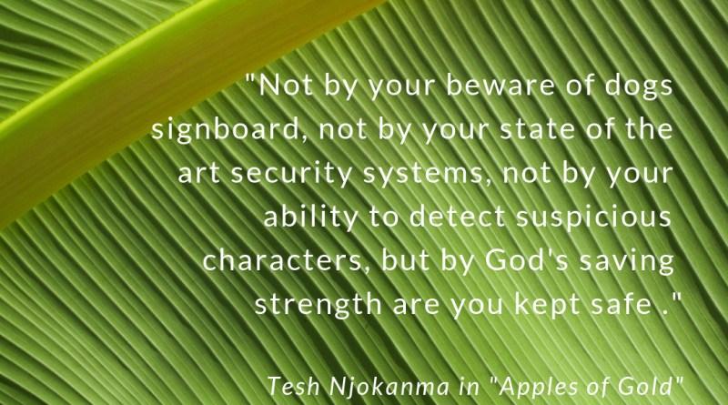 divine-security