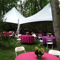 Backyard Outdoor Wedding Rental