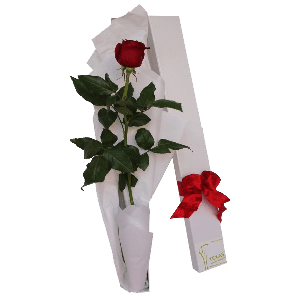 Boxed-Roses-600_600