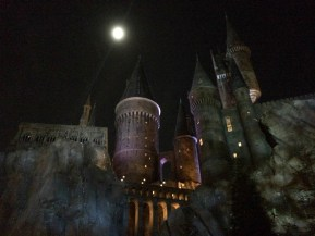 Potter-21