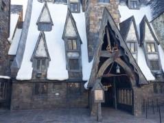 Potter-3