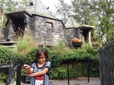 You can only see Hagrid's hut if you walk up through the flight of the Hippogriff ride.