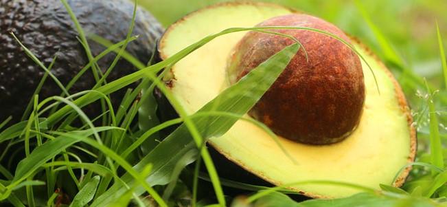 Тайское яблоко (Chom-phoo)