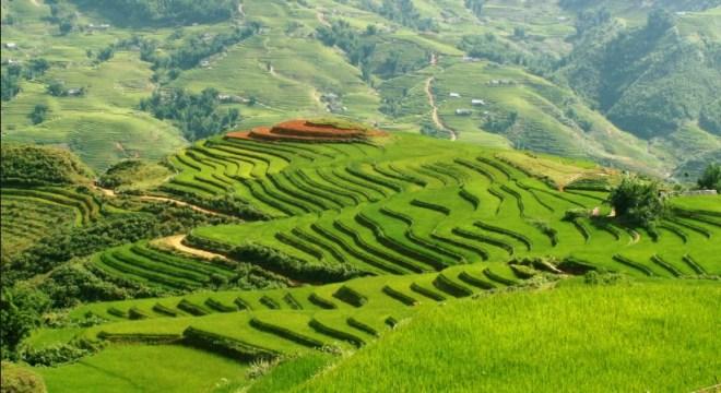 Сапа - Вьетнам