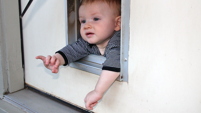 The Doggy Door is Something We Forget to Baby Proof