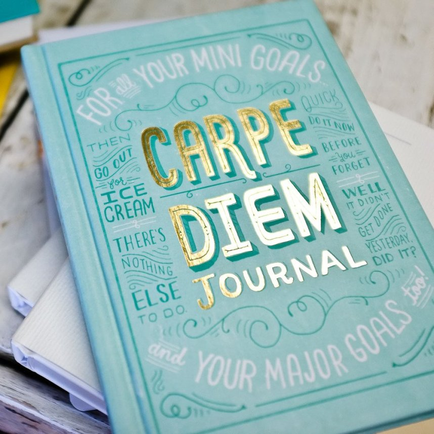 Carpe Diem journal as photographed by The Lovely Bird