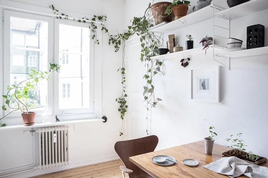 scandinavian_home_interior_plants_1