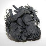 3D-Heart-Model