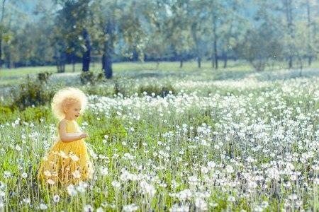 Солнечный одуванчик: Ангелина
