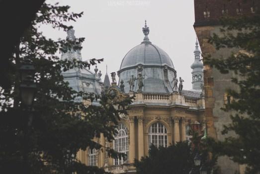 Влюбиться в Будапешт: Татьяна Сущеня