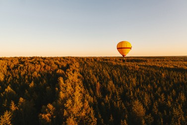 День рождения в небе: воздушный шар Маши