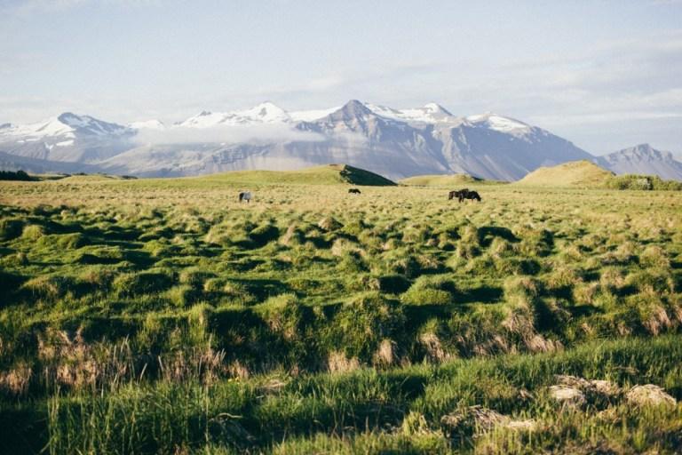 Гармония и сила природы: путешествие в Исландию