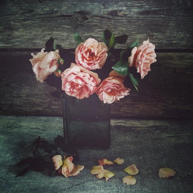 Тепло в фотографиях: инстаграм Александры Асташонок