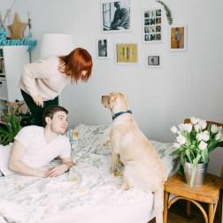Labrador-Miha-1