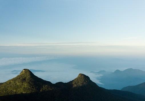 Страна чая: путешествие в Шри-Ланку