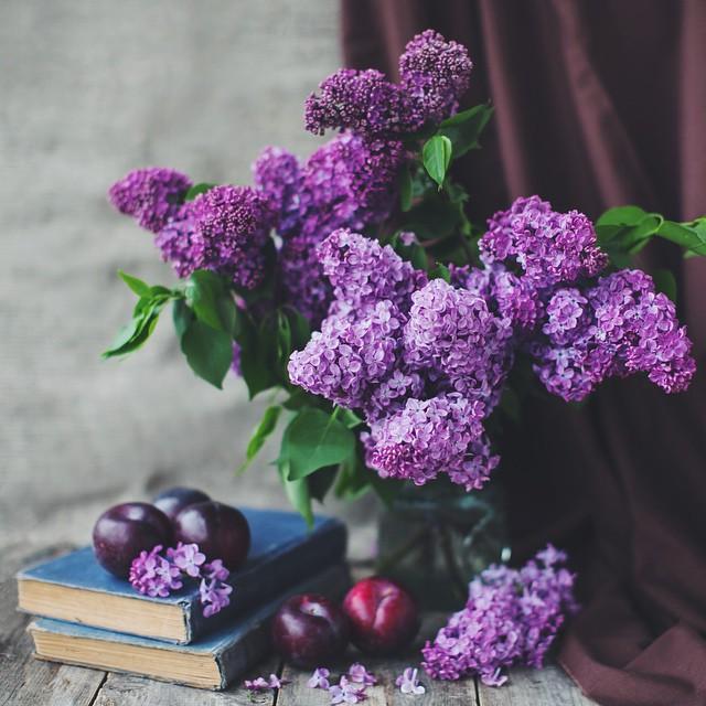 Книжный шкаф: 5 сборников рассказов