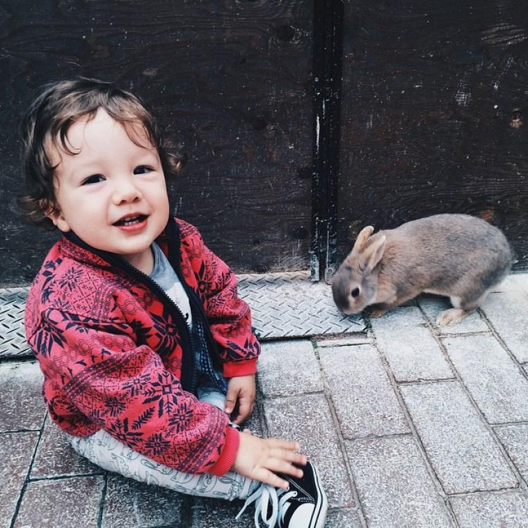 Alina_chepolinko-7 (28)