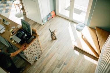 Romeow Cat Bistrot-2 (5)