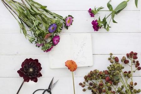 День знаний и цветов: Buketbutik об идеальном букете на 1 сентября