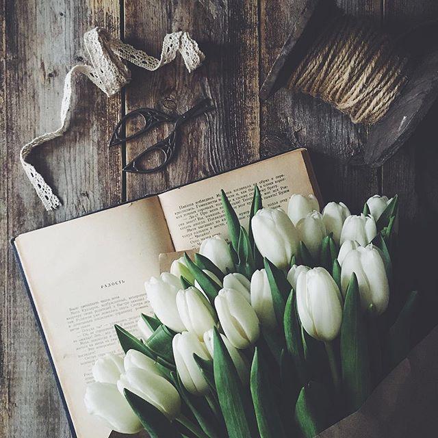 Книжный шкаф: 5 весенних книг