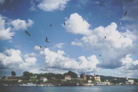 Очарование Скандинавии: прогулки по Осло