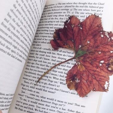 Читаем книги в оригинале: 5 главных правил
