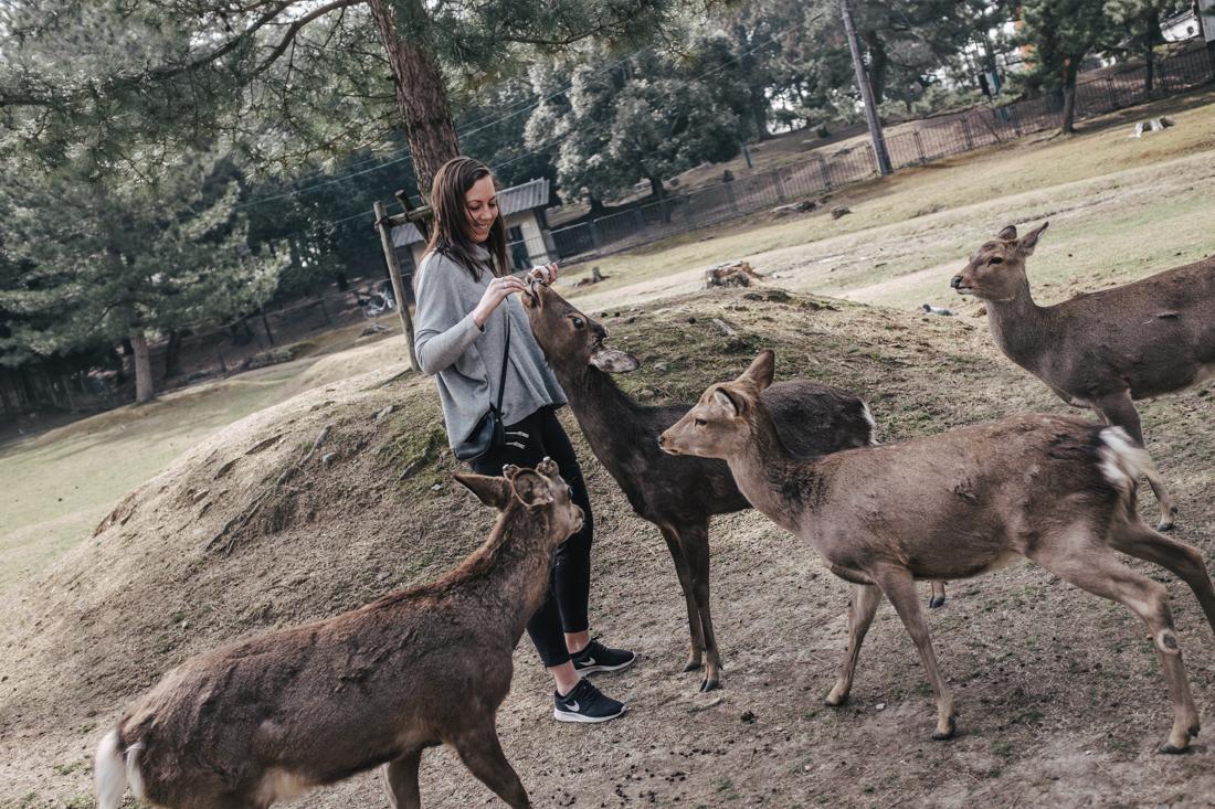 Nara-Park-160306-17