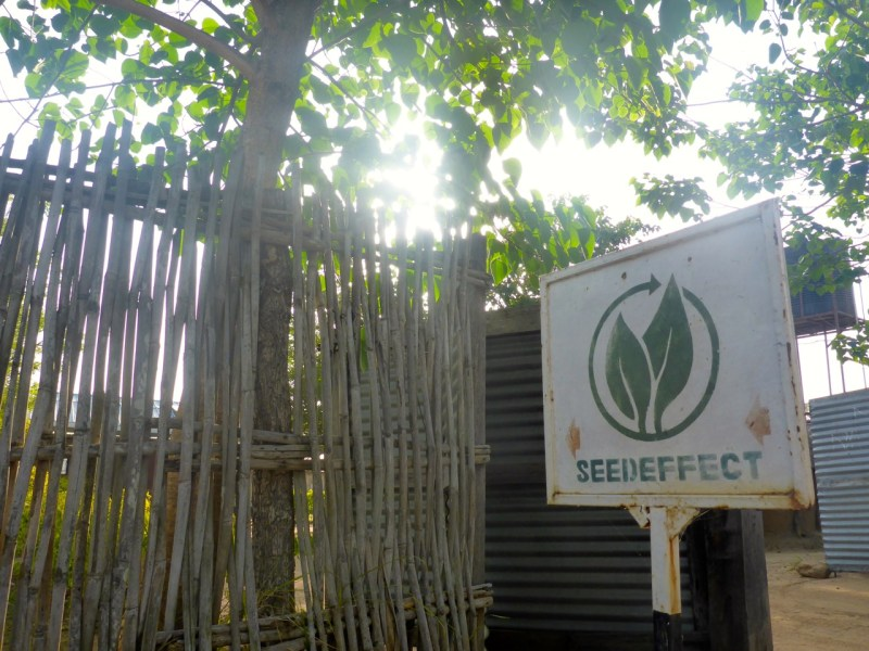 South Sudan - Seed Effect Sign