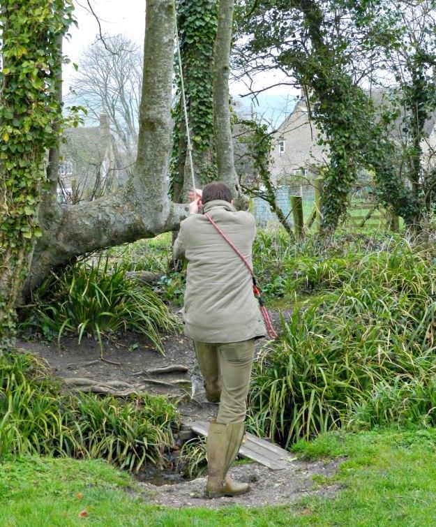 Swinging in Dorset