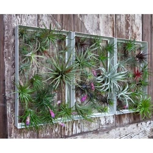 Medium Crop Of Garden Wall Decoration