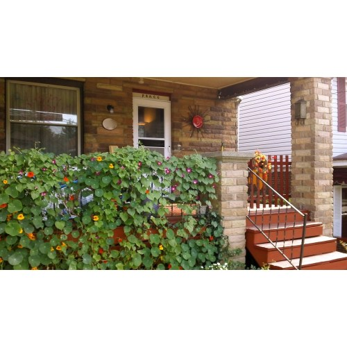Medium Crop Of Garden Wall Decor Ideas
