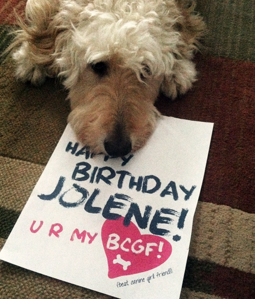 happy-birthday-jolene-canine-note-2013