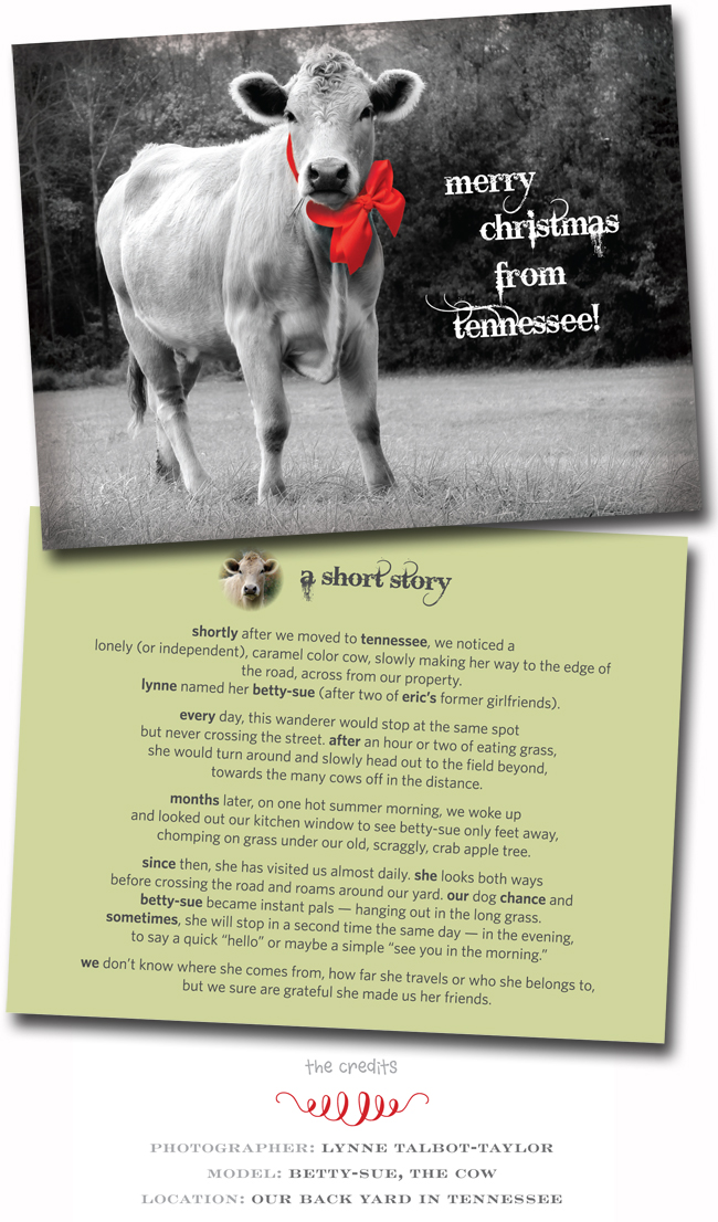 holiday-card-christmas-cow-2013