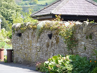 Exterior of a garden wall with flowers at its base and vines trailing over the top.
