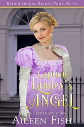 Cover image for Aileen Fish's Captain Lumley's Angel
