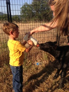 Wyatt getting  a little help from his Mom the first time he fed Sally. It almost made me cry, it was so cute.