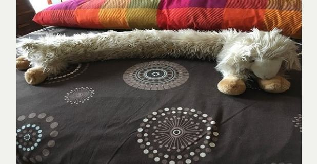 Milly's draught excluder